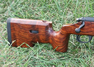 Rifle_2760
